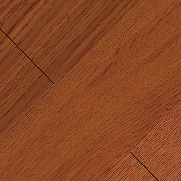 栎木JS-004-3