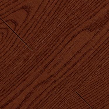 美国红栎JC-36-24