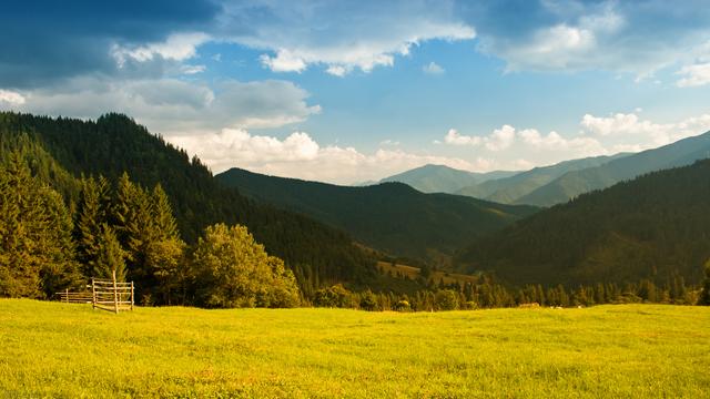 peyzazh-priroda-zelen-trava-5193.jpg